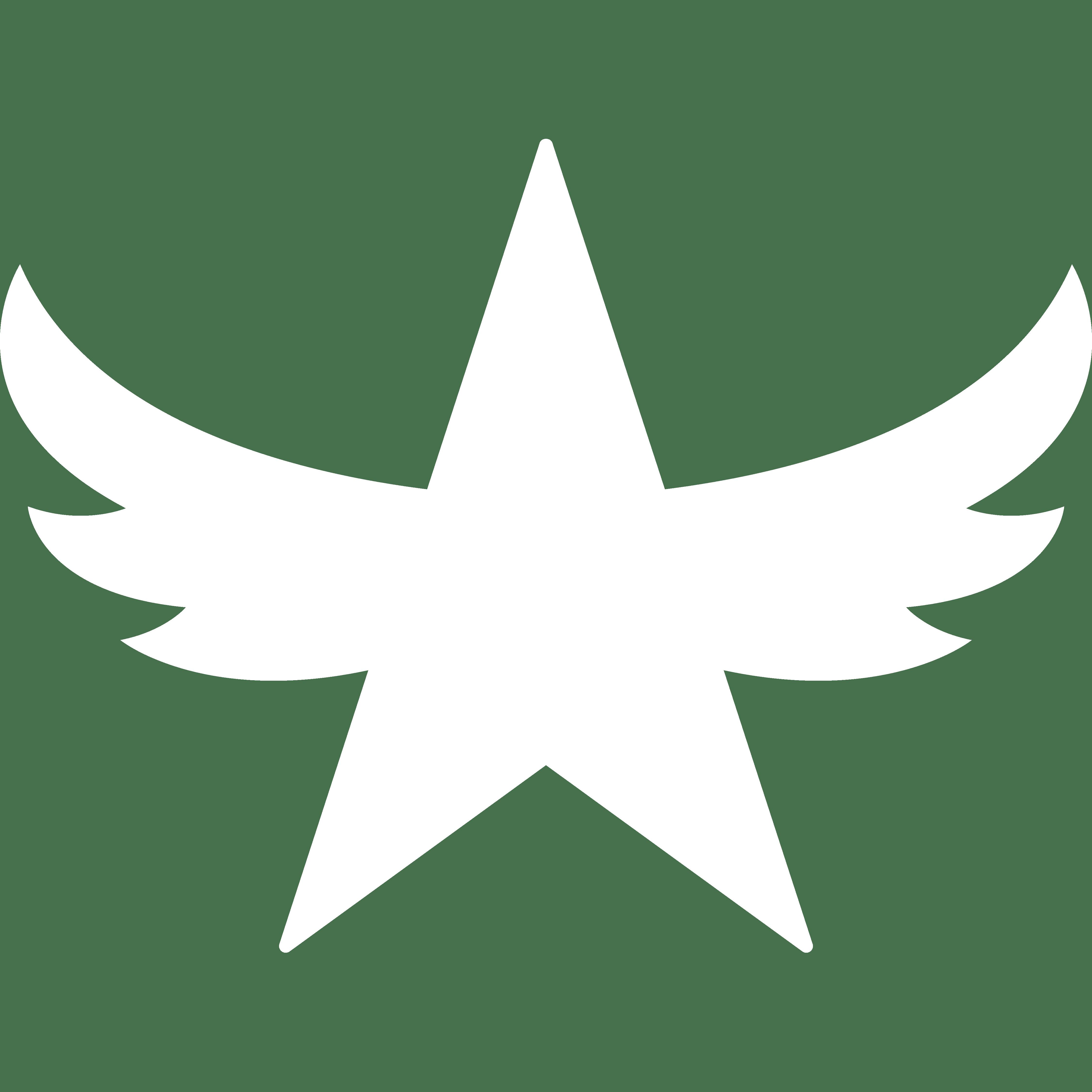 Brightwing Star Logo